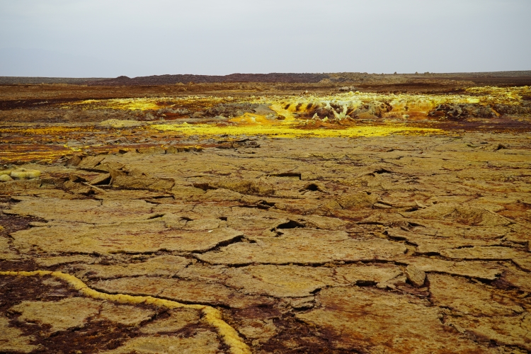 Sulphur soils. Photo: Pia Dubois